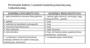 porównanie pro ieukariota